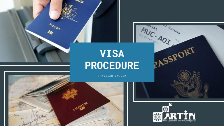 visa application assistance and support