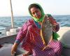 Hengam island women fishing bandari life