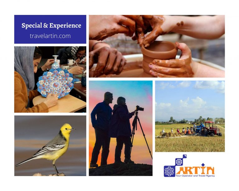 Special and experience tours