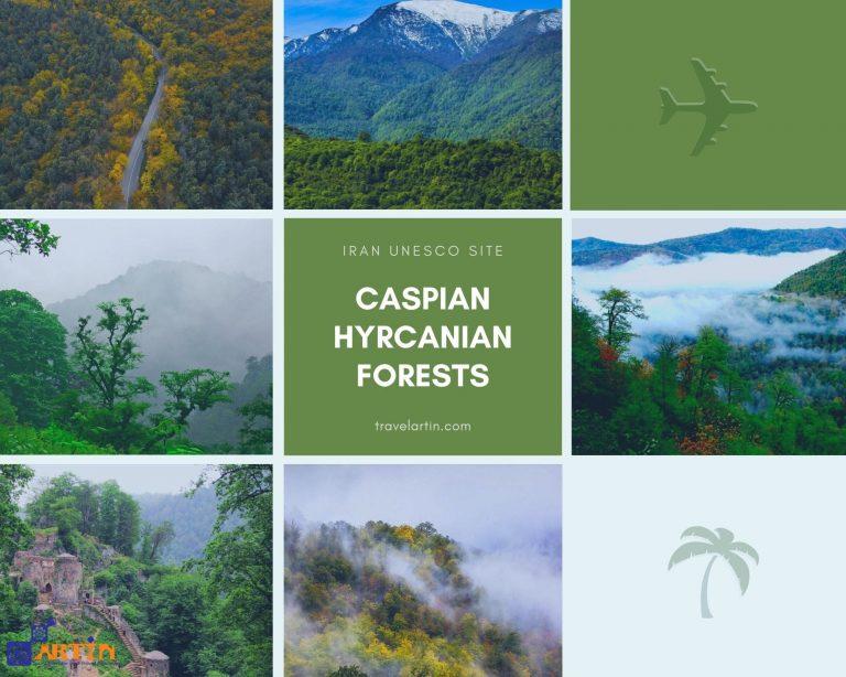 Caspian forests Iran natural unesco site Hyrcanian travelartin.com