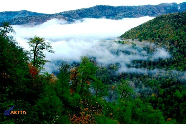 Hyrcanian mixed forest Caspian sea Persian forest